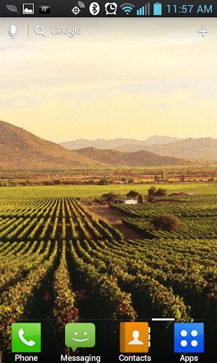 Vineyards Live Wallpaper