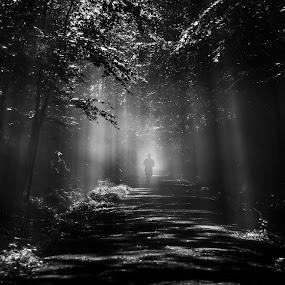 Tunnel of Light by Olga Gerik - Sports & Fitness Running ( silhouette, sunrise, sun, , #GARYFONGDRAMATICLIGHT, #WTFBOBDAVIS )