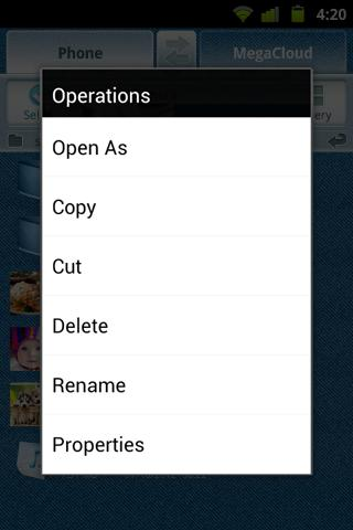 Pocket Files - screenshot