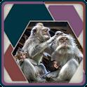 HexSaw - Families icon