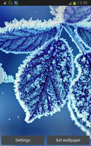 Winter Snowfall Wallpaper App