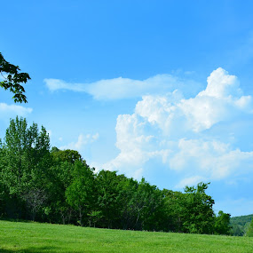 Kentucky Blue and Green by William Stewart - Landscapes Cloud Formations ( clouds, hills, sky, nature, trees, scenery, landscapes )
