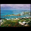 Discover Bermuda logo