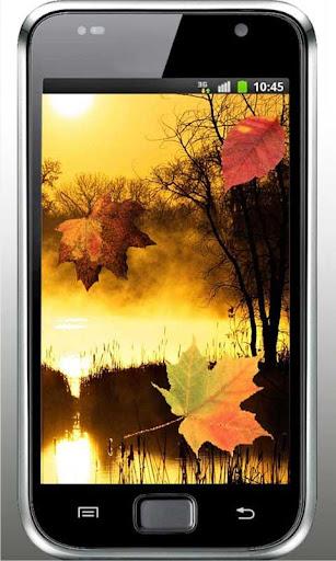 Autumn Sunset live wallpaper