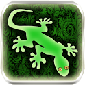 Gecko photo image editor icon