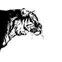 mygtavc - Logo