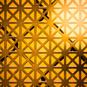 The Screen by Gerard Toney - Artistic Objects Industrial Objects ( chainlink, fence, screen, industrial, metal, wire, gold, light, sun )