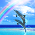 Dolphin Breeze Free icon