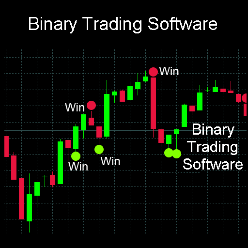 What is binary trading software