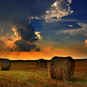 polje oblaci.jpg