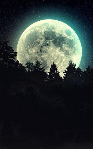 月明かりライブ壁紙|玩個人化App免費|玩APPs