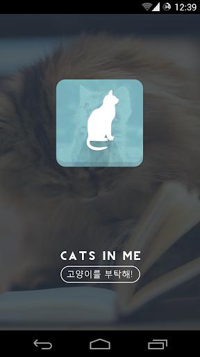 고양이를 부탁해 Cats In Me 고양이 정보