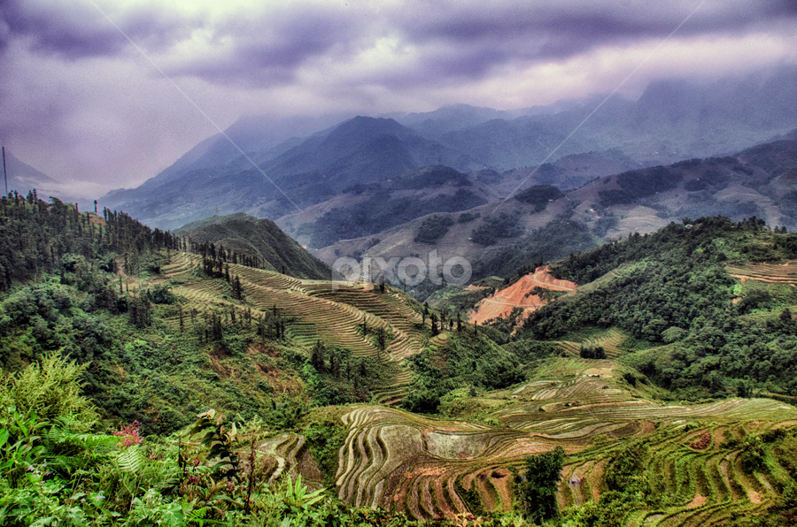 sapa, vietnam by Anastasia Tompkins - Landscapes Mountains & Hills ( #landscapes, #ricefields, #asia, #mountains, #photography,  )