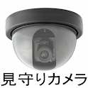 WatchmanCamera icon