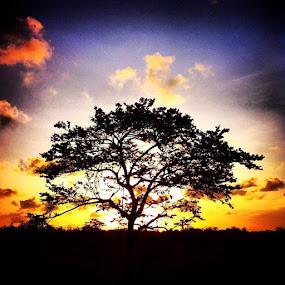 by Aditya Maulana - Instagram & Mobile iPhone ( photoholic, home, bali, indonesia, iphonesia, instanusantara, shootermag, shootermagazine, sunset )