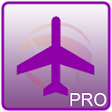 Singapore Flight Info Pro