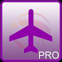 新加坡航班信息 Pro