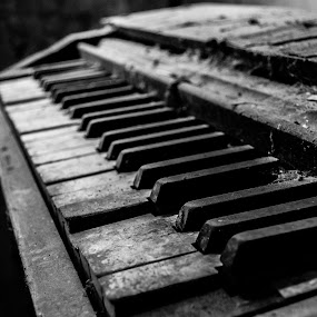 Old Piano by Nina Kriznic - Black & White Objects & Still Life ( music, old, piano, black and white, decay,  )