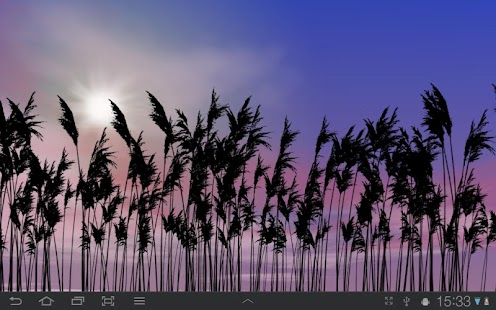 Reeds Free Live Wallpaper - screenshot thumbnail