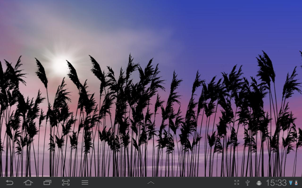 Reeds Free Live Wallpaper- screenshot