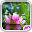 Water Lilies Magic Ripples icon