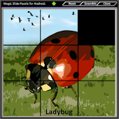 Magic Slide Puzzle Insects 1