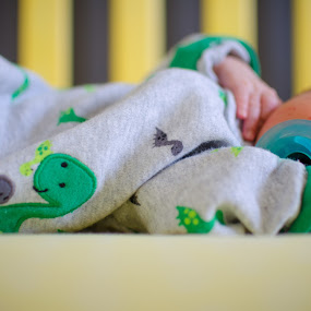 Catching Z's by Thanh Nguyen-Huynh - Babies & Children Babies ( infant, dinosaurs, sleeping, baby, nikon, d5100 )