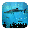 Aquarium Fish Wallpaper Themes icon