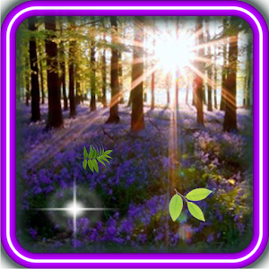 Forest Spring Nature for Android