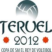 Copa del Rey de Voleibol 2012
