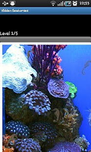 Hidden Object Games-Seahorses- screenshot thumbnail