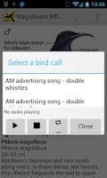 Screenshot of Morcombe's Birds of Aus (Lite)