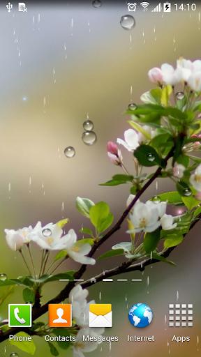 Rain Live Wallpaper 1.0.9 screenshots 5