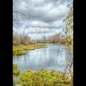 Monroe,Michigan by Christine Morningstar - Nature Up Close Water