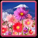 Flowers HD ScreenSaver!