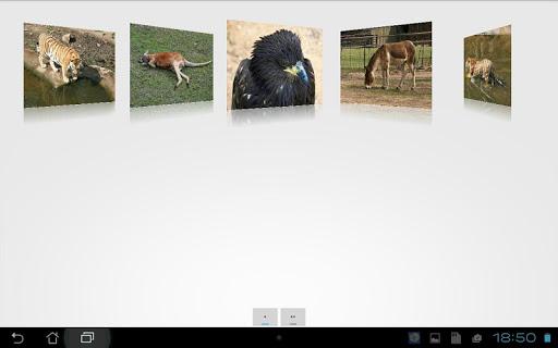【免費解謎App】Animals jigsaw puzzles-APP點子