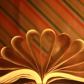 Paper Lotus by Kaushik Bera - Abstract Patterns ( , Lighting, moods, mood lighting )
