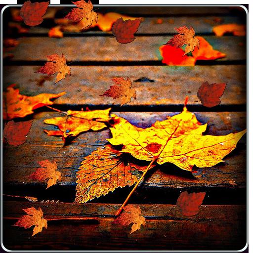 Autumn Live Wallpaper LOGO-APP點子