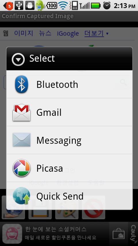 Capture Browser- screenshot