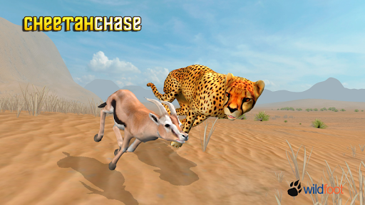 Cheetah Chase Simulator
