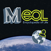 M-EOL: a biodiversity game