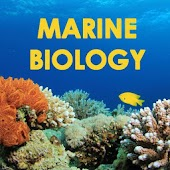 Glossary of Marine Biology