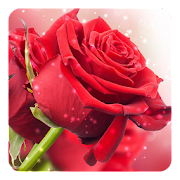 Red Rose Live Wallpaper