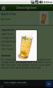 Drinks Recipes - screenshot thumbnail