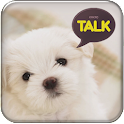 Puppy kakao talk theme logo