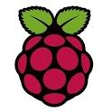 Raspberry Control icon