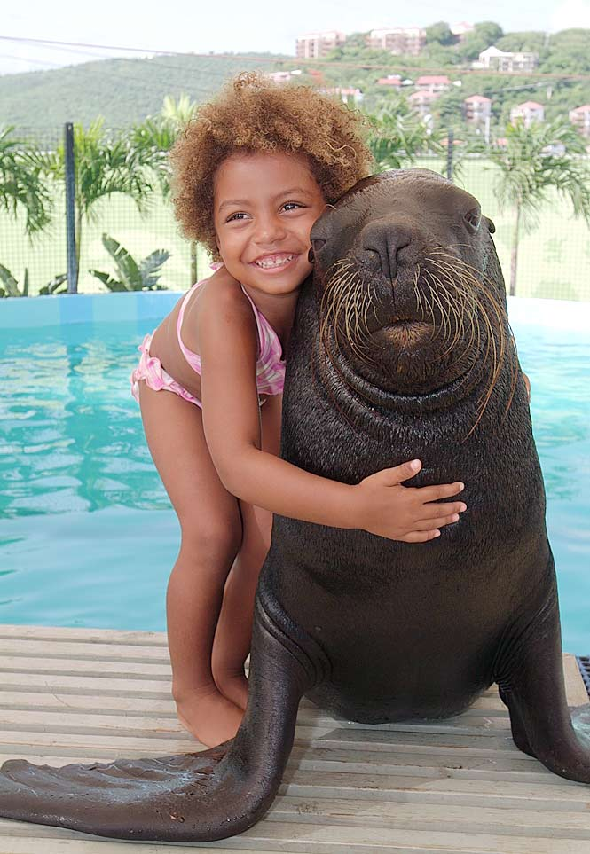 A young girl hugs a sea lion at Coral World Ocean Park in St. Thomas, US Virgin Islands.