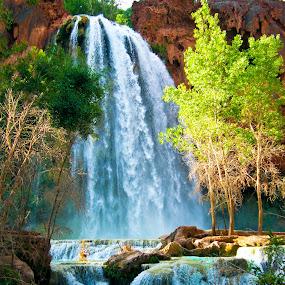 Havasu Falls by Steve Densley - Landscapes Waterscapes ( waterfalls, nature, red rock, landscape, river, , colorful, mood factory, vibrant, happiness, January, moods, emotions, inspiration )