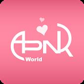 Apink World