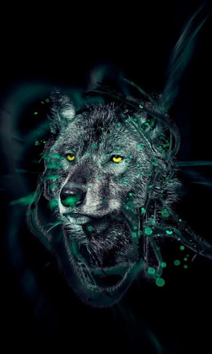 Wolfs HD Wallpaper